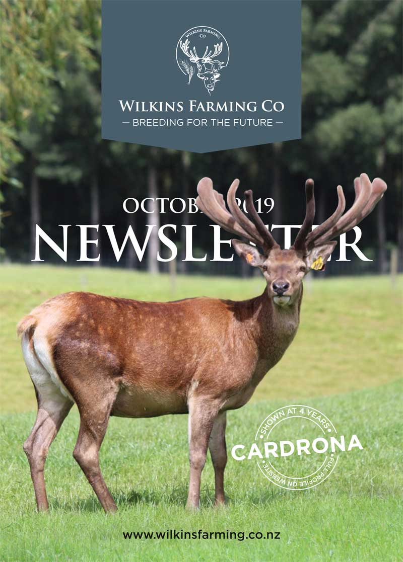 Wilkins-Farming---October-2019-NewsLetter