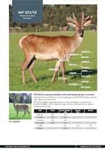 Wilkins Farming Co   WF572/13
